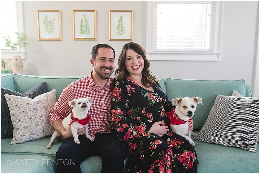 downtown Decatur lifestyle in home maternity session with dogs