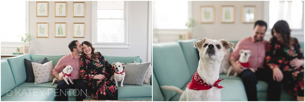downtown Decatur lifestyle in home maternity session with two dogs